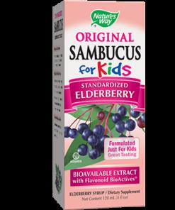 Sambucus for Kids, Elderberry Flavor, 4 fl oz from Nature's Way