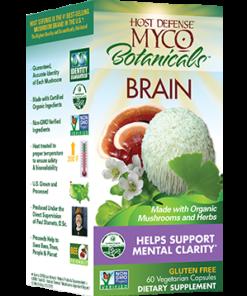Mycobotanicals, Brain, 60 Capsules by Host Defense